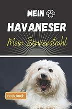 Mein Havaneser Mein Sonnenstrahl Notizbuch: Liniertes Notizbuch | Hundebild auf dem Umschlag | Havaneser |100 Decorative S...