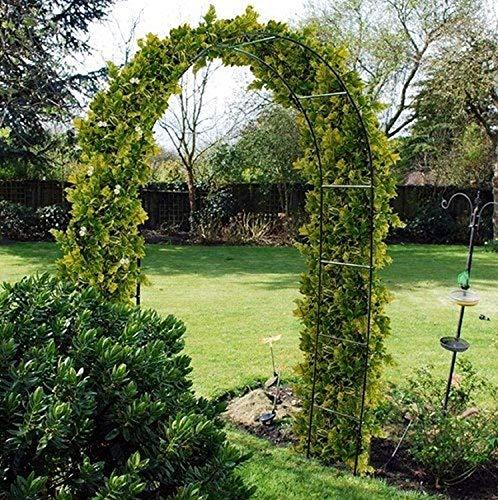 RAM ONLINE 5060459948266 Ram Grande Arche métal Noir de 2,4 m pour rosiers, Plantes grimpantes, décoration de...