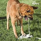 My Pet Ez ig112921–Quelle der Pedal für Haustiere, Weiß