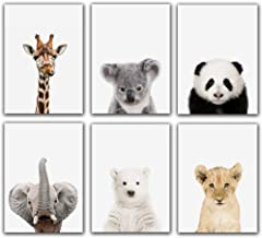 Baby Safari Animals Poster Prints Nursery Decor Pictures (8x10) | Set of 6 (Unframed) Cute Animal Photography Wall Prints ...