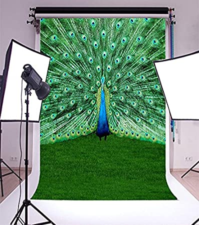 Peacocks and Snowflakes Classic Traditional Patterns Crystal Christmas Seasonal Background for Party Home Decor Outdoorsy Theme Vinyl Shoot Props Sky Blue Red Peacock 6x8 FT Photography Backdrop