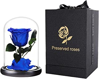 Preserved Rose Blue Forever Roses Real Rose in Glass Dome, Eternal Roses Never Withered Flower Gifts for Female, Valentine's Day, Mother's Day, Birthday, Christmas (6.7 inch)