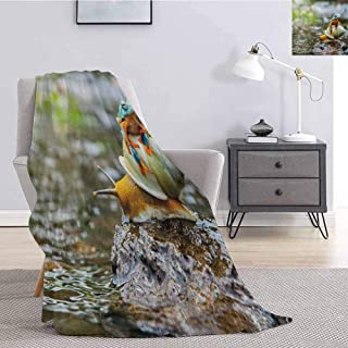 Tr.G Funny Comfortable Large Blanket Cute Colorful Frog Above The Snail Riverscape Water Rock Mollusks Amphibian Animals Microfiber Blanket Bed Sofa or Travel W55 x L55 Inch Multicolor