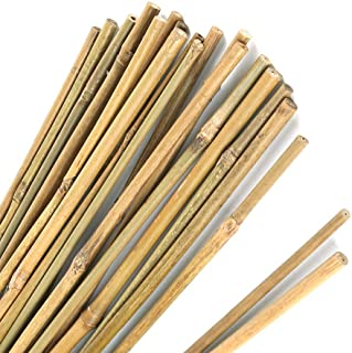 Pllieay 1.33'/16 inch Natural Thick Bamboo Stakes Garden Stakes for Indoor Gardening Plant Supports