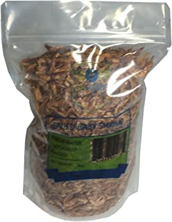 Dried Baby Shrimp, Fresh Water excellent protein rich, aquatic Turtle & Fish food 8oz