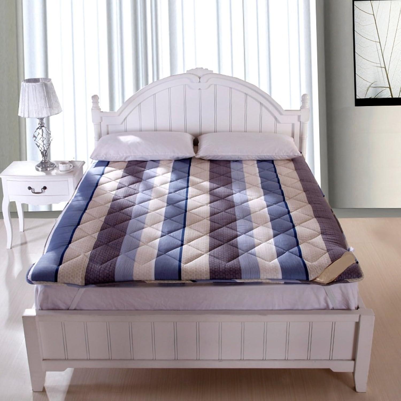 Ultra Soft Traditional Japanese Tatami Floor Mattresses Futon Mat Collapsible Tatami Mat Floor Mattress Sofa Bed (color   C, Size   90  200cm)