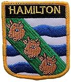 1000 Flaggen Hamilton Neuseeland Aufnäher, bestickt