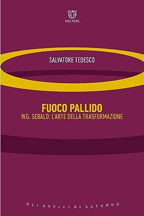 Fuoco pallido: W.G. Sebald: l'arte della trasformazione