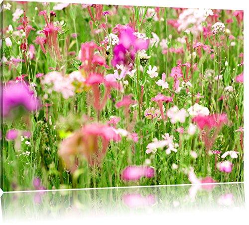 Wundervolle Blumenwiese, Format: 80x60 auf Leinwand, XXL riesige Bilder fertig gerahmt mit Keilrahmen, Kunstdruck auf Wandbild mit Rahmen, günstiger als Gemälde oder...