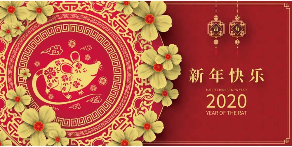 Leowefowa 15x8ft Happy Chinese New Year 2020 Year of The Rat Backdrop Vinyl Chinese Style Mouse Paper-Cut Flowers Old Lanterns Red Photography Background New Year Party Banner Wallpaper