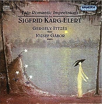 Karg-Elert: Piano Sonata in B-Flat Major / Impressions Exotiques / Suite Pointillistique
