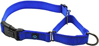 martingale dog collar with clip