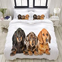 MOKALE Duvet Cover Set, Cute Sausage Dog Puppies Lying Together, Decorative 3 Piece Bedding Set with 2 Pillow Shams, Queen