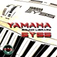 Yamaha VP-1 - the very Best of - unique original H... #3