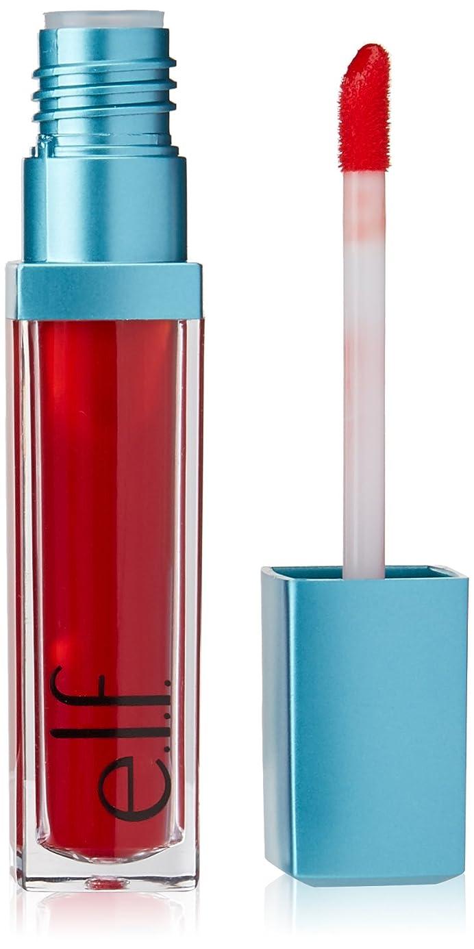 吸収一時的未使用e.l.f. Aqua Beauty Radiant Gel Lip Stain - Red Orange Wash (並行輸入品)