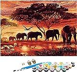 HIQE-FL Pittura su Tela Quadri con Numeri,Set per Pittura Digitale con Numeri,Kit per Dipingere con i Numeri,Dipingere con i Numeri (A)