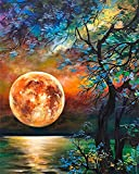 Paint by Numbers for Adults Beginner - Paint by Number Kits on Canvas - Moon Scenery Oil Painting Acrylic Watercolor Painting by Numbers Perfect for Gift Wall Decor 15.7x19.7 Inch