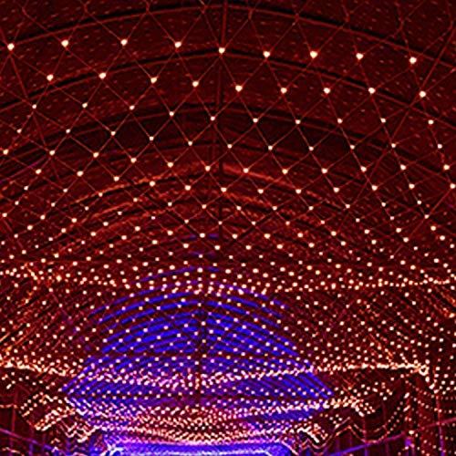 Cadena de luz, la luz del jardín del árbol del LED Luces netas Decorativas Secuencia de Hadas estrellados Cadena Luces de Navidad de Malla Boda Fiesta de cumpleaños