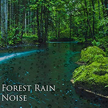 Forest Rain Noise