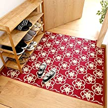 Simple Style Entrance Doormat Anti-Skid Rugs for Bedroom/Kitchen Bedside Mats Durable Rugs Washable Mats Tea Table Rugs Ba...