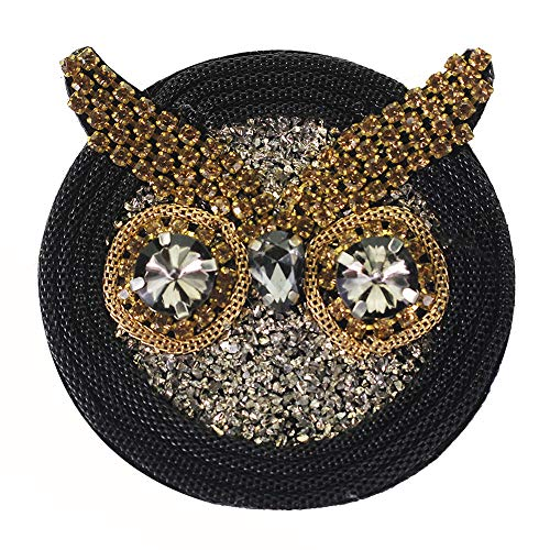 EMDOMO Rhinestone Stone Sea Star Cherry Letters Owl Beaded Crystal Badge Sew on Patches Shoes Bags Decorated Craft 2pc TH1875 (owl)
