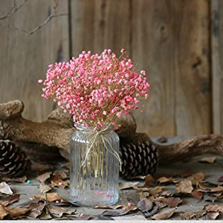 🍀Libobo🍀Natural Dried Flower Baby's Breath Home Decor Natural Dried Flower Full Stars Gy (Pink)