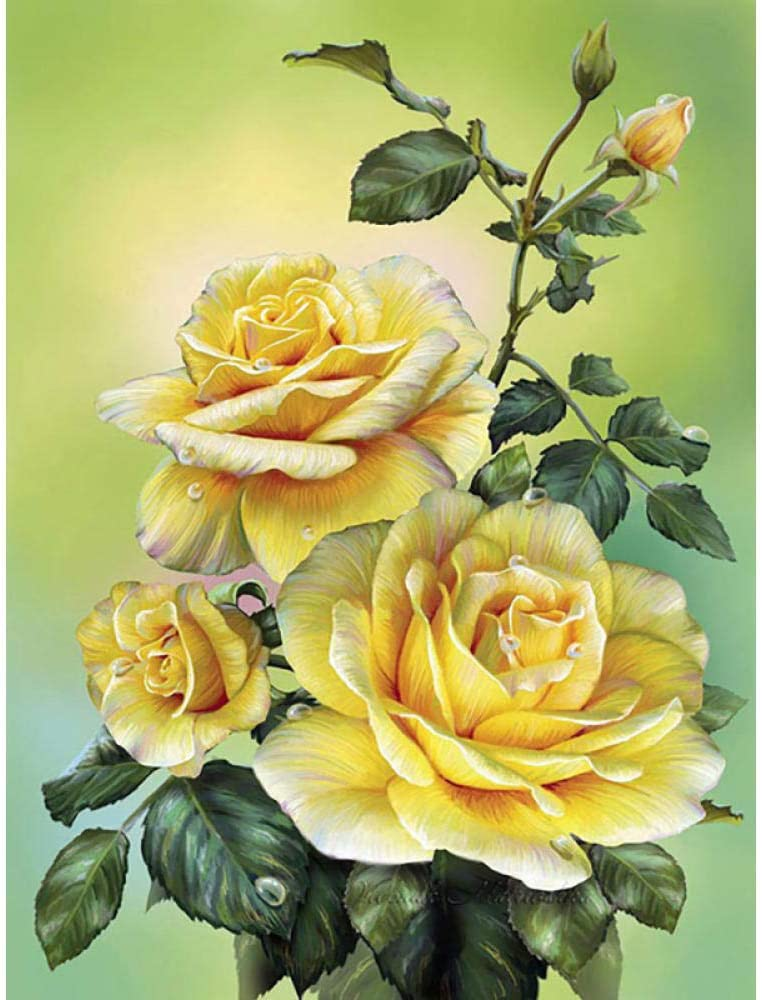5D Diamond Painting Flower Embroidery Pattern Cra Online limited product Mosaic Max 79% OFF