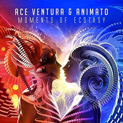 Ace Ventura & Animato