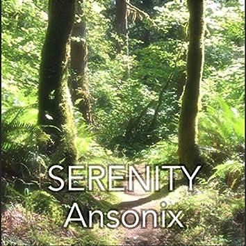 Serenity (Radio Edit)