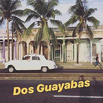 Dos Guayabas