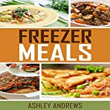 Freezer Meals: Easy and Delicious Money Saving Freezer Meal Recipes