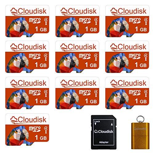 Cloudisk 10x 1GB Micro SD-Speicherkarte Class4 mit MicroSD Adapter + Kartenleser (Parrot-Prime)