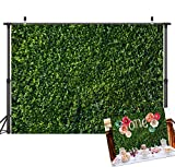 Art Studio Green Leaves Photography Backdrops Spring Nature Safari Party Decoration Outdoorsy Newborn Baby Shower Backdrop Wedding Birthday Photo Background Studio Props Booth Vinyl 7x5ft