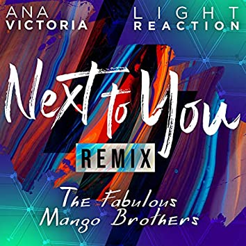 Next To You (feat. Ana Victoria) [The Fabulous Mango Brothers Remix]