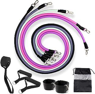 comprar comparacion Lenlun Juego de bandas de ejercicio (hasta 100 libras), juego de correas de tubo elástico para entrenamiento físico