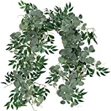 Supla 2 Separate 6'L/Pcs Faux Willow Vines Twigs Leaves and Silver Dollar Eucalyptus Leaves Garland String Wedding Arch Swag Backdrop Garland Doorways Greenery Farmhouse Garland Indoor Outdoor Decor