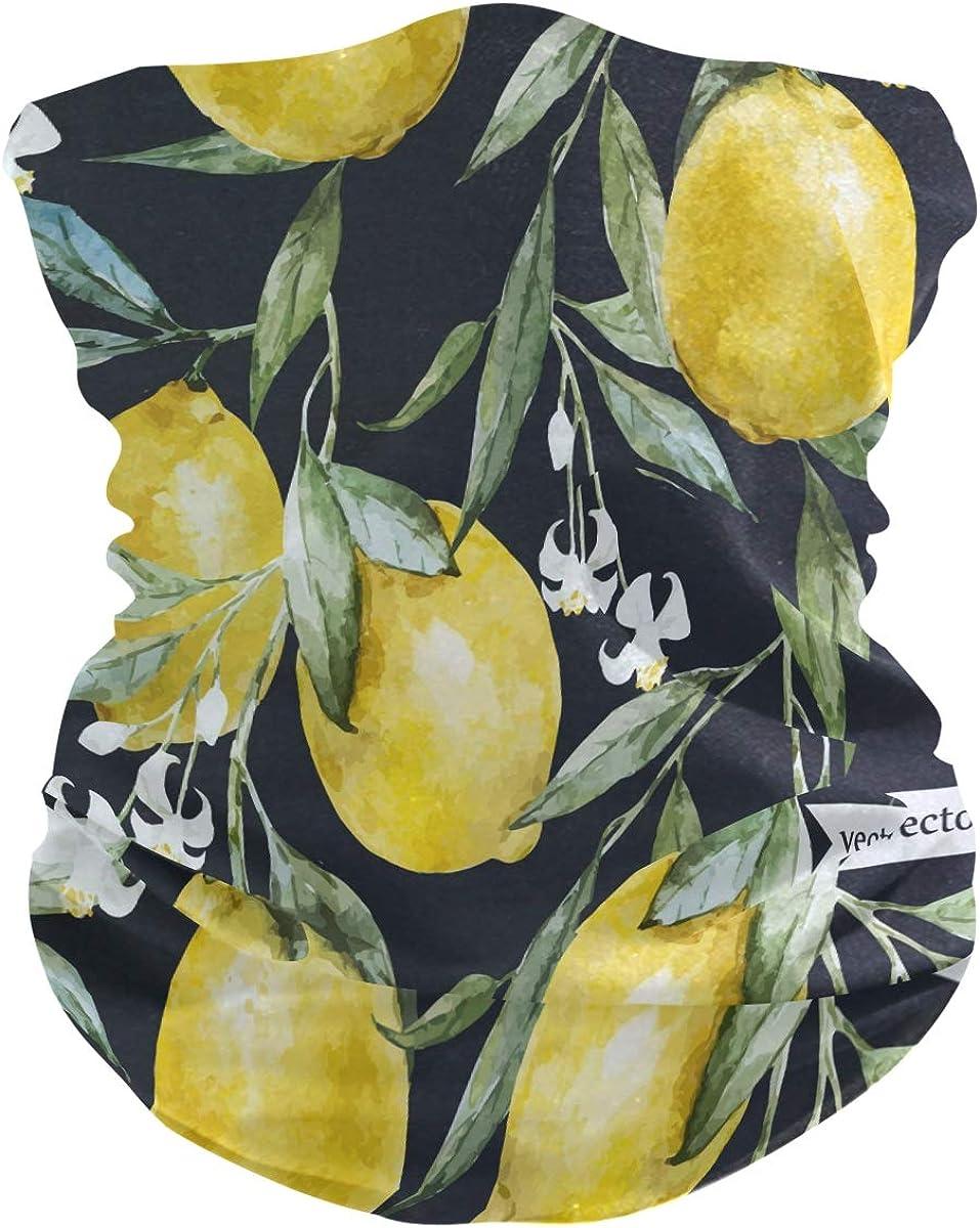 Bandana Face Scarf Lemon Neck Gaiter Headwear Headband for Cycling Fishing Hiking Camping