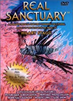 Hilary Stagg: Real Sanctuary [DVD]
