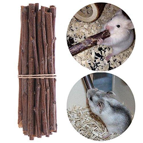 Hamster-Kauspielzeug aus Naturholz, Äste, zum Schleifen der Zähne, für Eichhörnchen, Wüstenrennmäuse, Ratte, Meerschweinchen, Kaninchen, Nagetiere