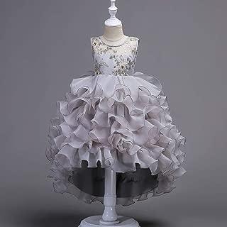 Luxury Princess Dress Embroidered Dress Child Princess Skirt Short in Front After Long Dress Girls Dress Wedding Dress Levels ryq (Color : Grey, Size : 100cm)