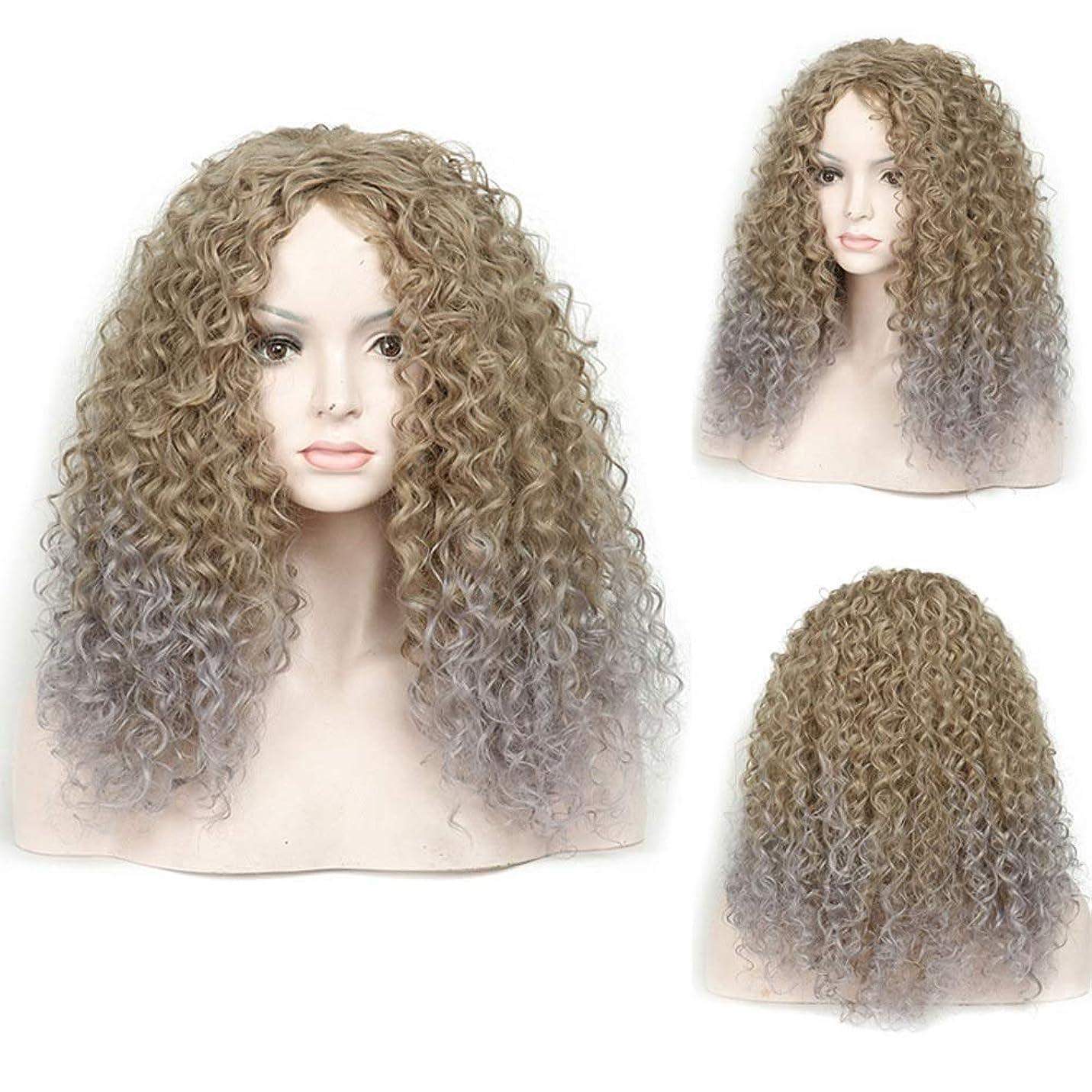 海洋の真似る塊BOBIDYEE アフリカの人工毛髪黒グラデーションおばあちゃんグレー長い巻き毛女性の爆発ヘッドコスプレかつらパーティーかつら (Color : グレー)