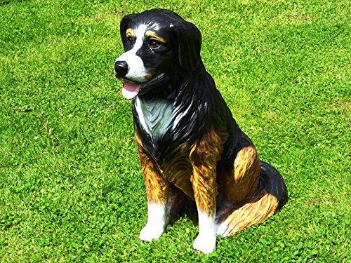 DEKO VERTRIEB BAYERN XL Berner Sennenhund LEBENSGROSS~Figur~HUNDEFIGUR LEBENSGRÖSSE~Hund Deluxe Gartendeko 80cm~Garten Dekoration