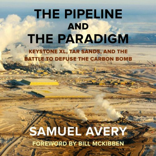 The Pipeline and the Paradigm audiobook cover art
