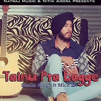 Tainu Pta Lagge (feat. Mick Z.)