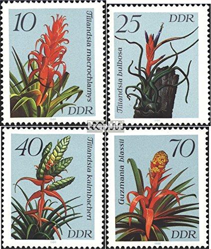 DDR Mi.-Aantal.: 3149-3152 (compleet.Kwestie) 1988 Bromelia (Postzegels voor verzamelaars) plant