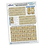MyTinyWorld Puppenhaus Komplettset von 168 Farbe und Sepia Pilze Etikett A4 Wert Folie