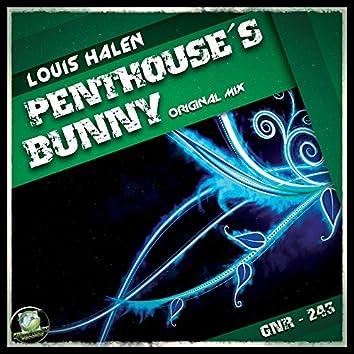 Penthouse's Bunny