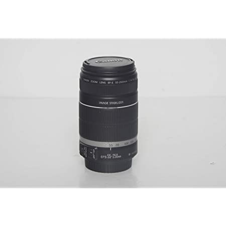 Canon Ef S 55 250mm F 4 5 6 Is Telephoto Zoom Lens For Camera Photo