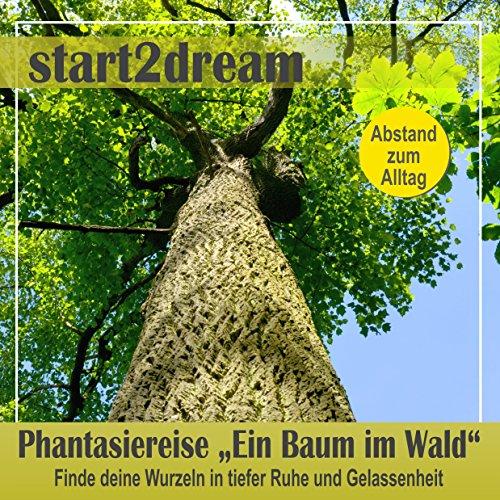 """Phantasiereise """"Ein Baum im Wald"""" Titelbild"""