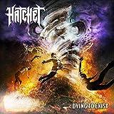 Songtexte von Hatchet - Dying to Exist